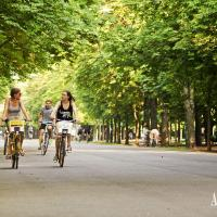 You may as well rent a bike and ride along the most beautiful alley in Prater ...