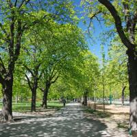 Strolling through Vienna's Prater - vast recreation area